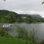 Airthrey Loch, Stirling U