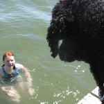 Atticus worries while Hannah swims