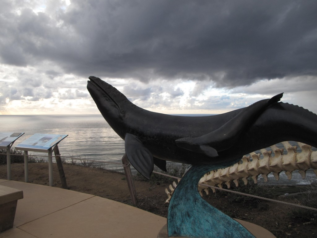 Whale Sculputure