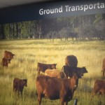 Ground Transportation from Calgary Airport