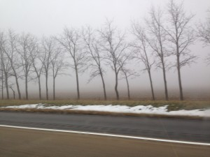Fog All The Way To DC
